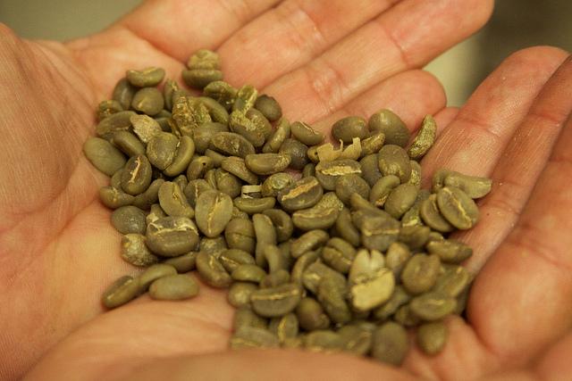 Zelená káva a přípravek GREEN COFFEE PLUS